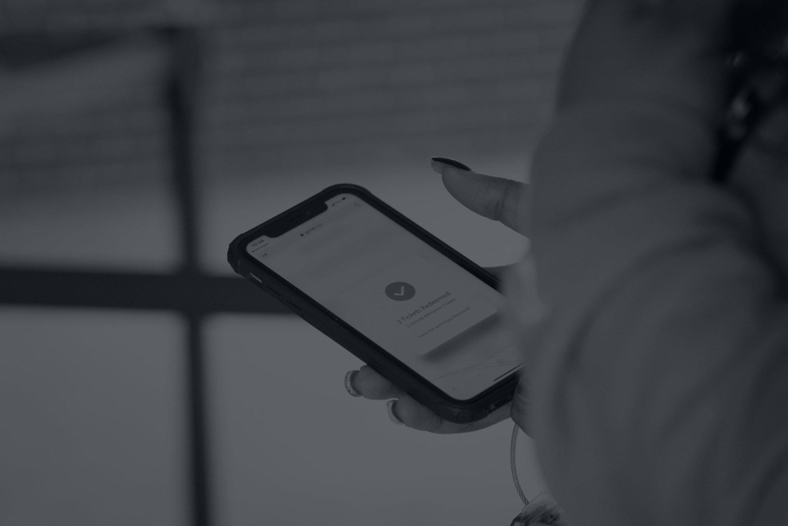 GoFan digital ticketing application